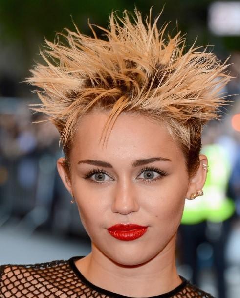 Mileypic blog