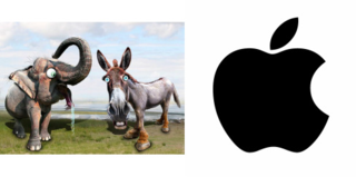 Elephants asses apple