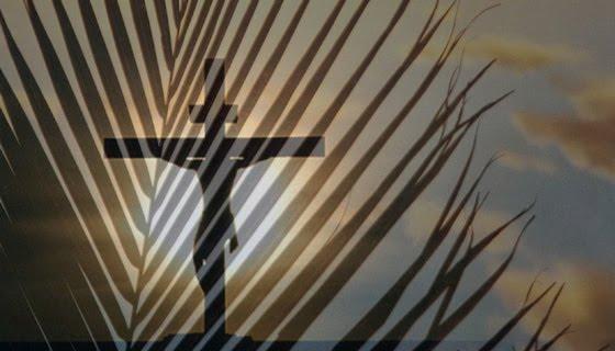 Cross_palms_bn