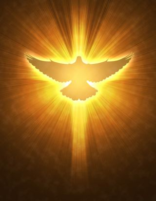 Holy-Spirit-Dove-793x1024